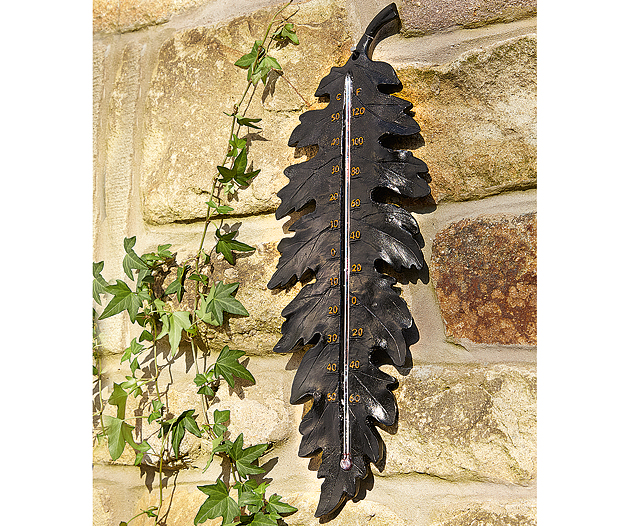 Leaf Shape Thermometer
