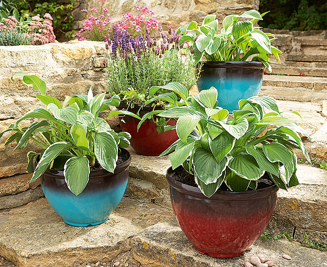 Glazed Look Plastic Pots Set of 2