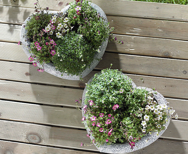 Heart Shape Planter Set of 2