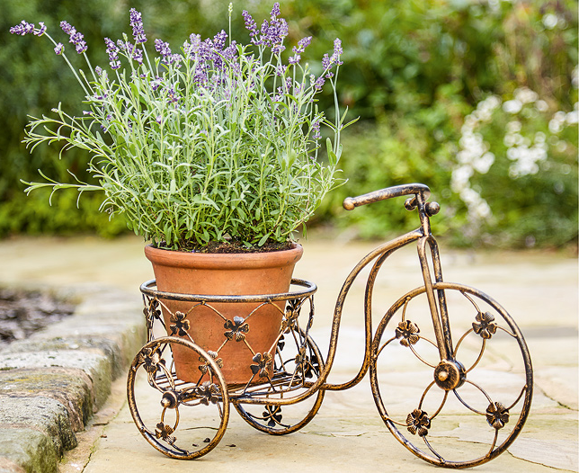 Tricycle Flower Pot