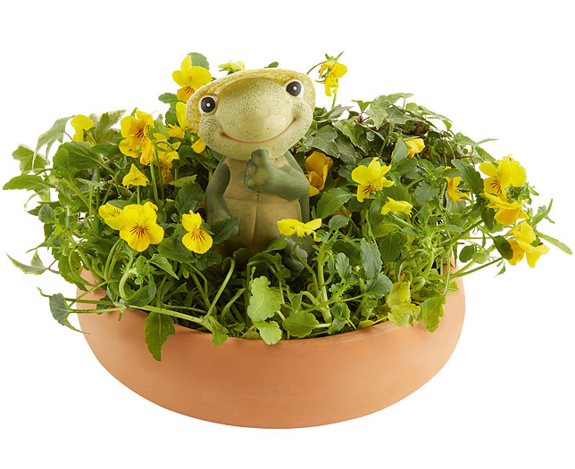 Turtle Design Flower Pot