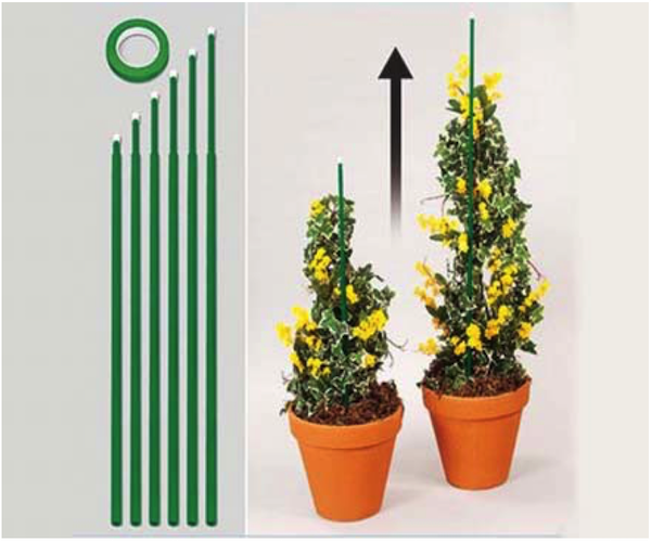 Set of 6 Extending Plant Stakes with Tape