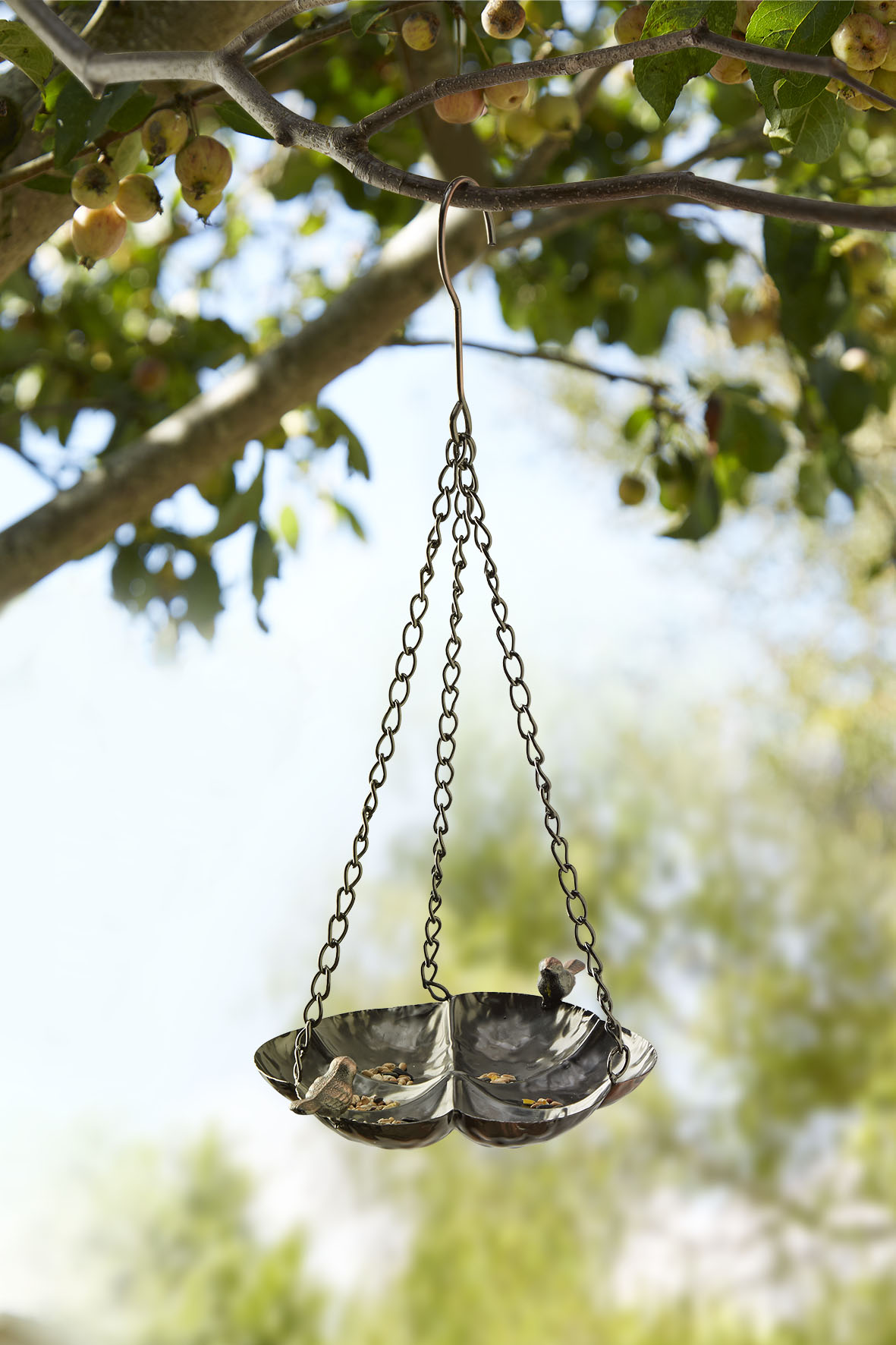 Metal Hanging Bird Feeder