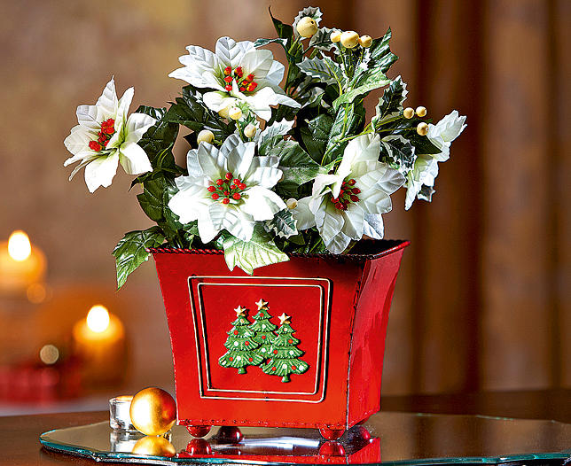 Christmas Tree Flower Pot