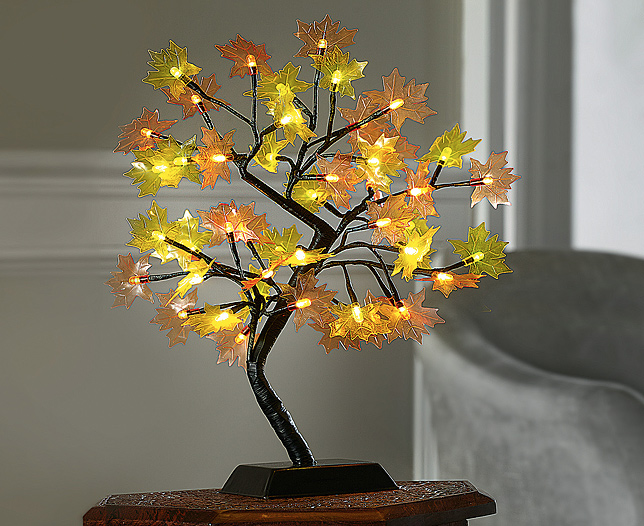 Maple Tree Light